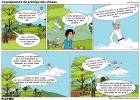 6 - Connaissance du principe des choses