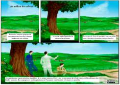 39 - Au milieu des arbres