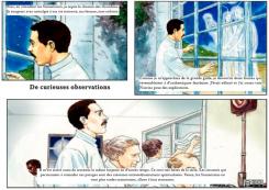 33 – De curieuses observations